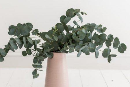 eukaliptus w ślubnych dekoracjach